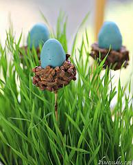 Kulinarische Vorfreude auf den Frühling (Quelle: flickr.com)