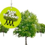 Mit Bäumen gegen den Klimawandel (Bild: Ritter Sport)
