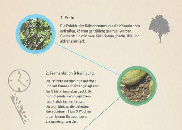infografik-schokoladenherstellung